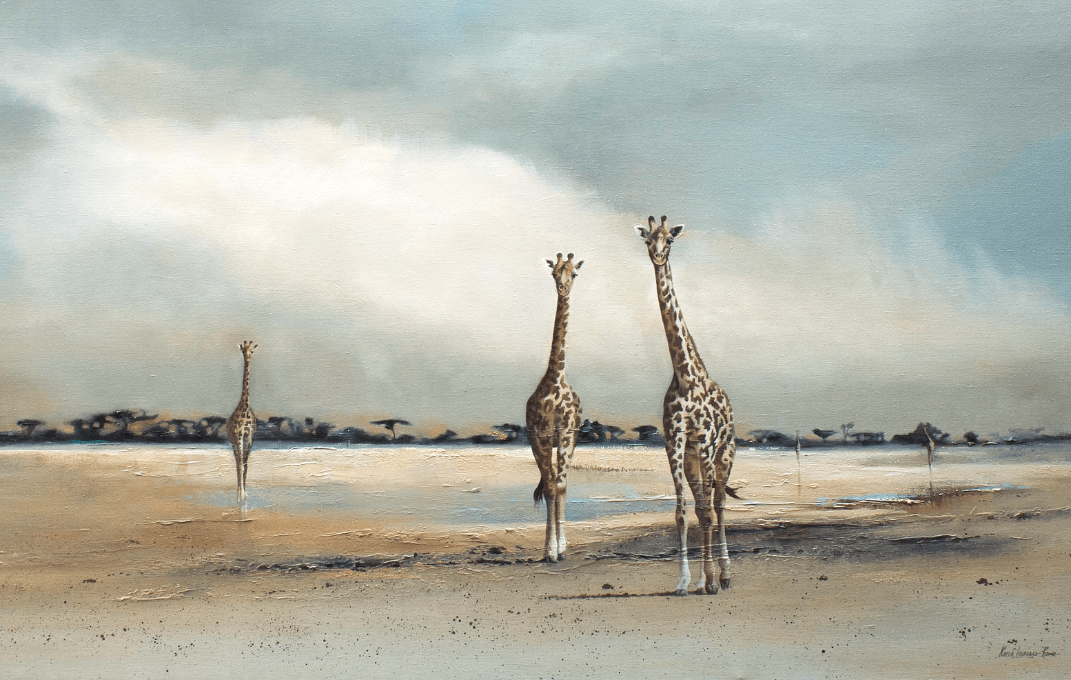 Lake Bed Giraffes