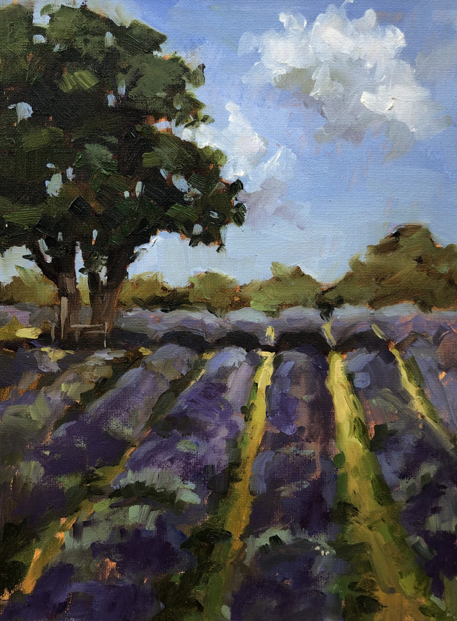 Lacender Rows Mayfield by Penny German